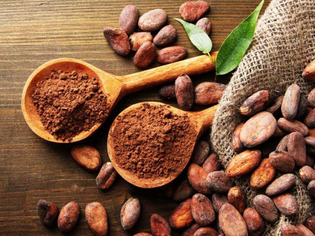 La leggenda del cacao: il dono di un dio azteco