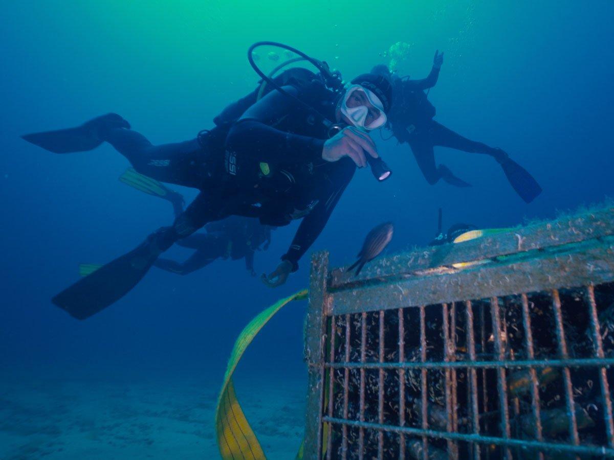 Akènta Sub, lo spumante affinato in fondo al mare