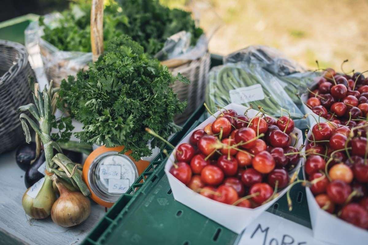 Cucina sostenibile, come sarà? Le risposte dei grandi chef della Danimarca